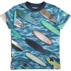 Molo Raymont Surfboards Top