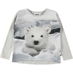 Molo Renate Polar Bear