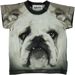 Molo Egon Bulldog Top