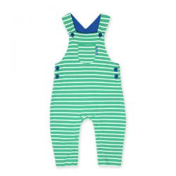 Toby Tiger Green Stripe Dungaree